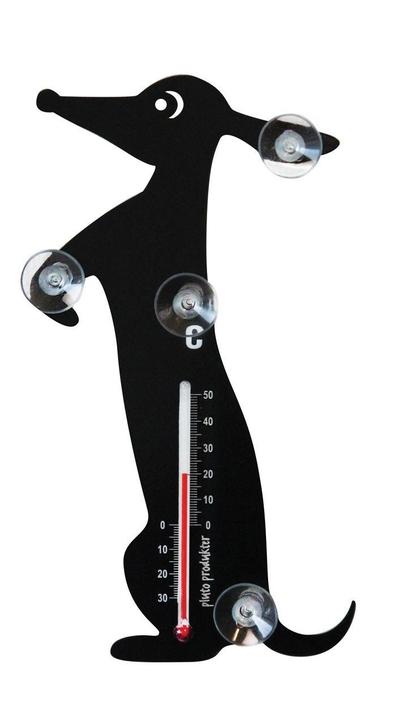 Temometer - Tax, svart