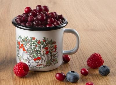 Elsa Beskow Lingonberries emaljmugg 2,5 dl